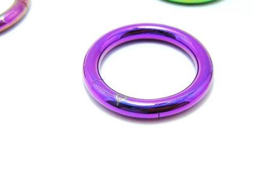 他の写真2: CLOVER GLASS Titanium Segment Ring 8Ga CG-T-BCS8 クローバーグラス ボディピアス チタン セグメントピアス メンズ レディース